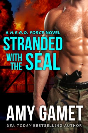Cover for Stranded with the SEAL