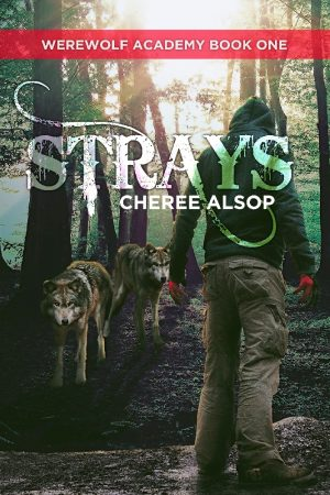 Cover for Strays
