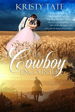 Cover for The Cowboy Encounter