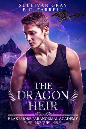Cover for The Dragon Heir