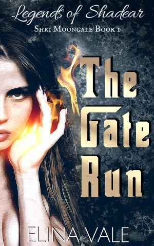 Cover for The Gate Run