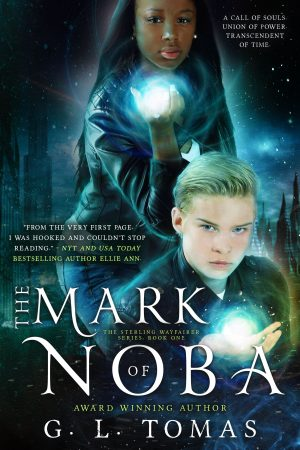 Cover for The Mark of Noba