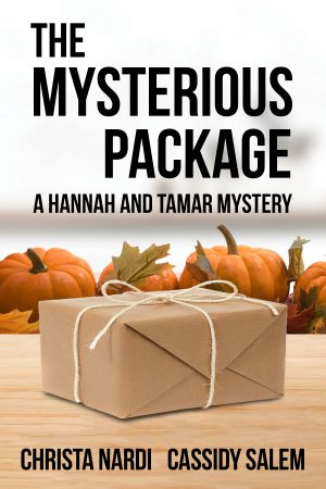 Cover for The Mysterious Package