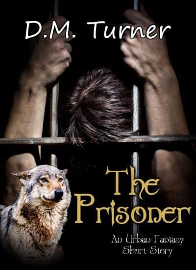 Cover for The Prisoner