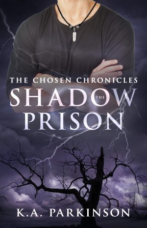 Cover for The Shadow Prison