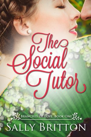 Cover for The Social Tutor