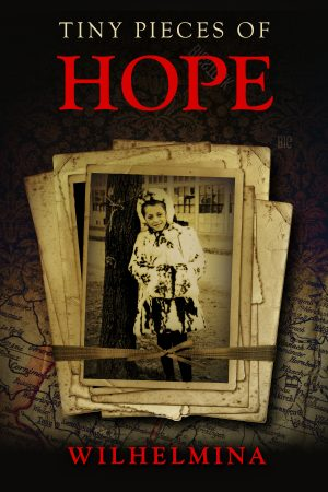 Cover for Tiny Pieces of Hope