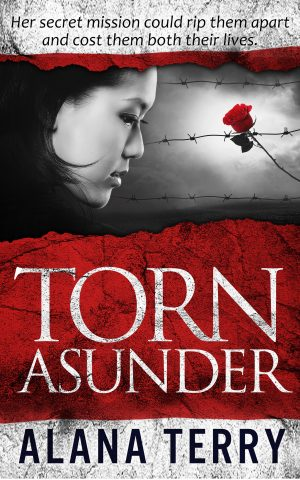 Cover for Torn Asunder