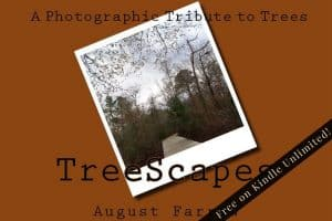 Cover for TreeScapes: A Photographic Tribute to Trees