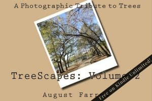Cover for TreeScapes: Volume 2: A Photographic Tribute to Trees