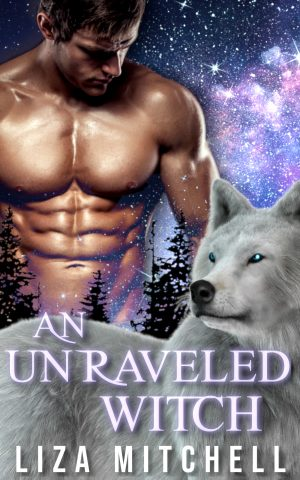 Cover for Unraveling a Witch