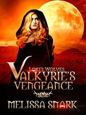 Cover for Valkyrie's Vengeance