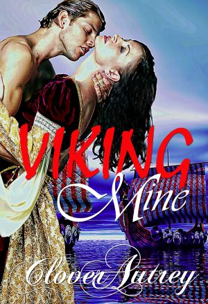 Cover for Viking Mine