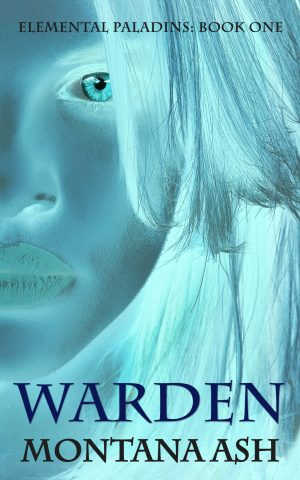 Cover for Warden