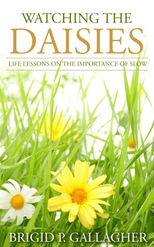 Cover for Watching the Daisies