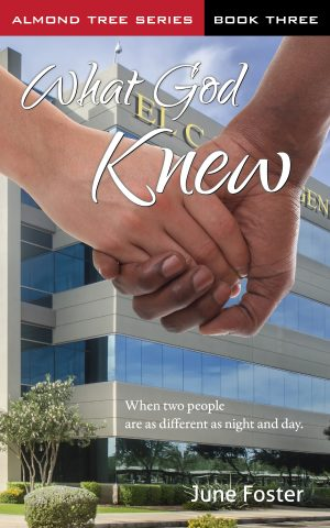 Cover for What God Knew