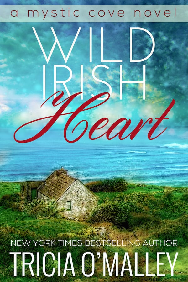 Cover for Wild Irish Heart