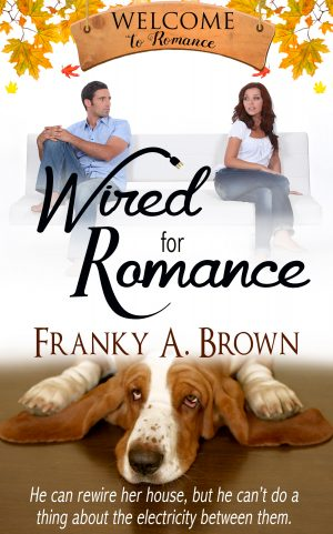 Cover for Wired for Romance