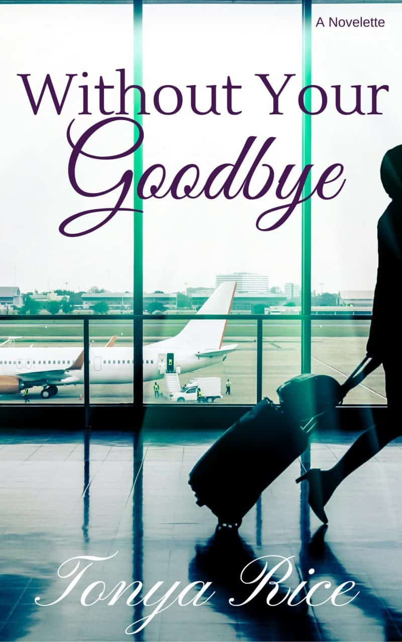 Cover for Without Your Goodbye: A Novelette