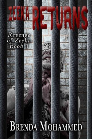 Cover for Zeeka Returns