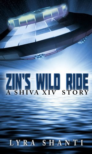 Cover for Zin's Wild Ride