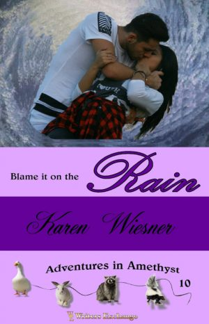 Cover for Blame it on the Rain