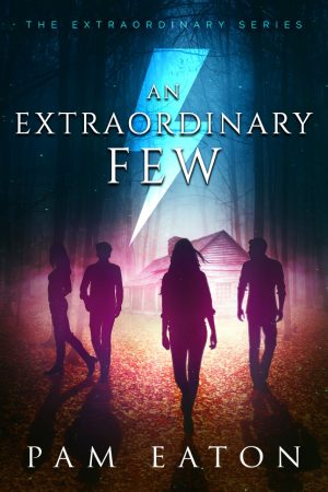 Cover for An Extraordinary Few