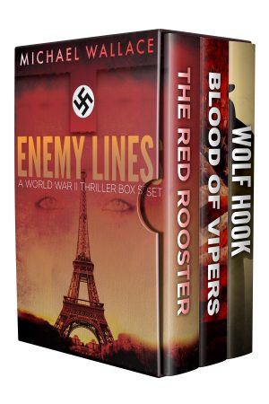 Cover for Enemy Lines