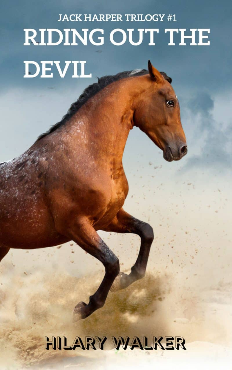 Cover for Riding Out the Devil: The Story of a Wounded Horse Healer