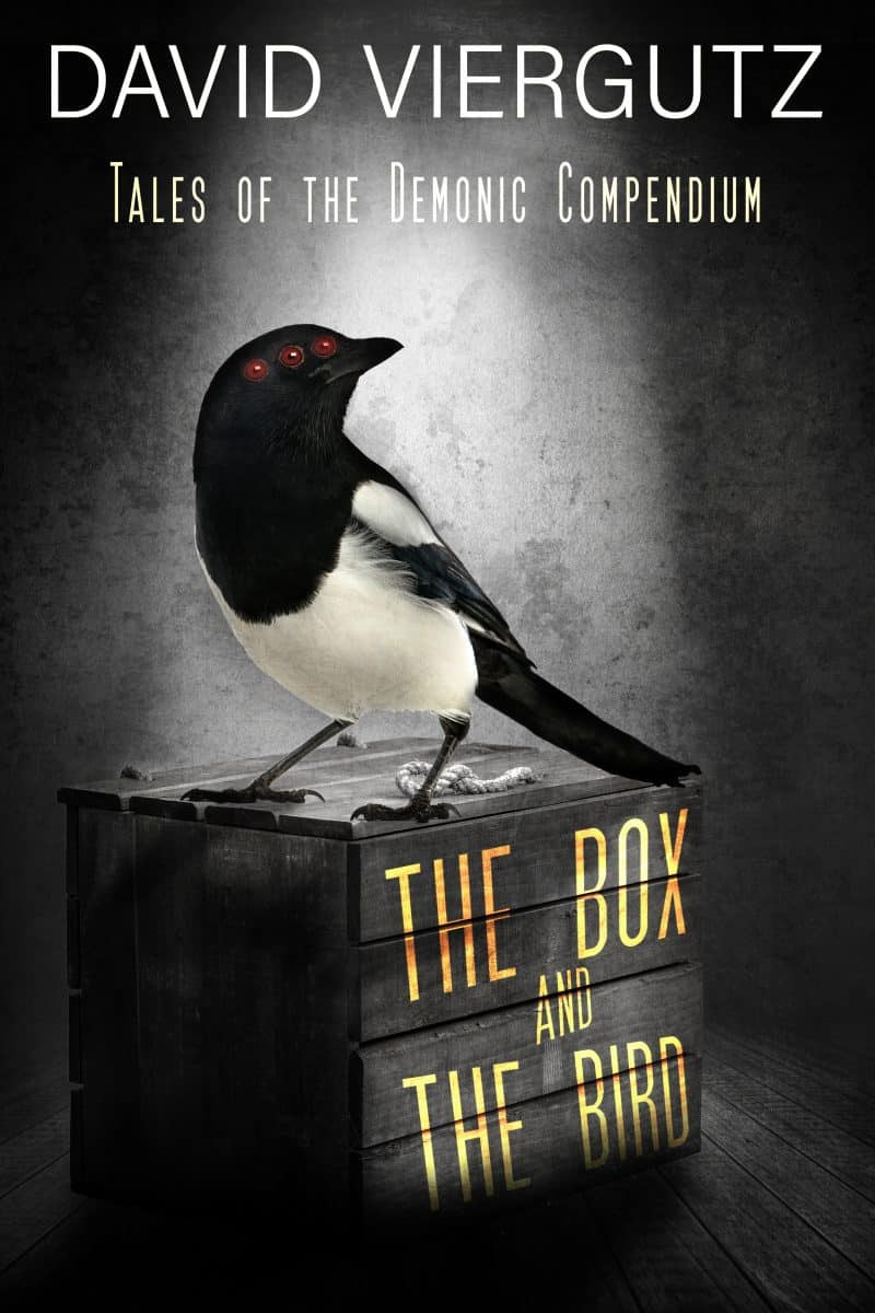 Cover for The Box and the Bird