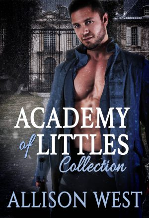 Cover for Academy of Littles