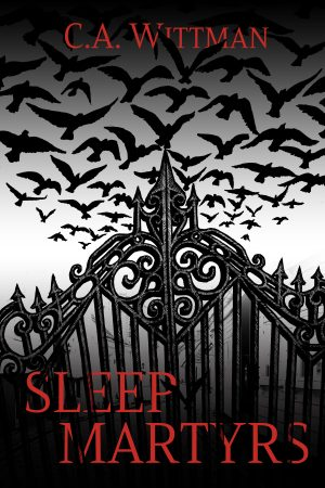 Cover for Sleep Martyrs