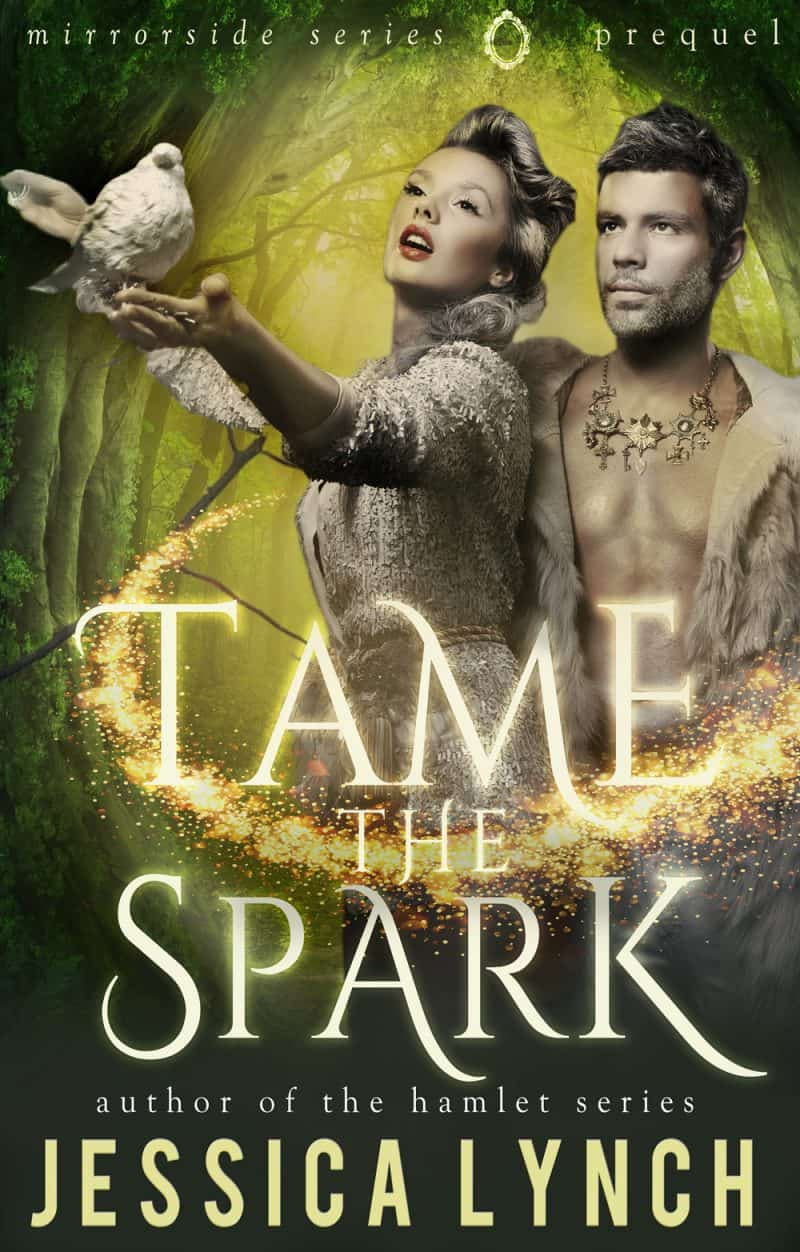 Cover for Tame the Spark: A Mirrorside Prequel