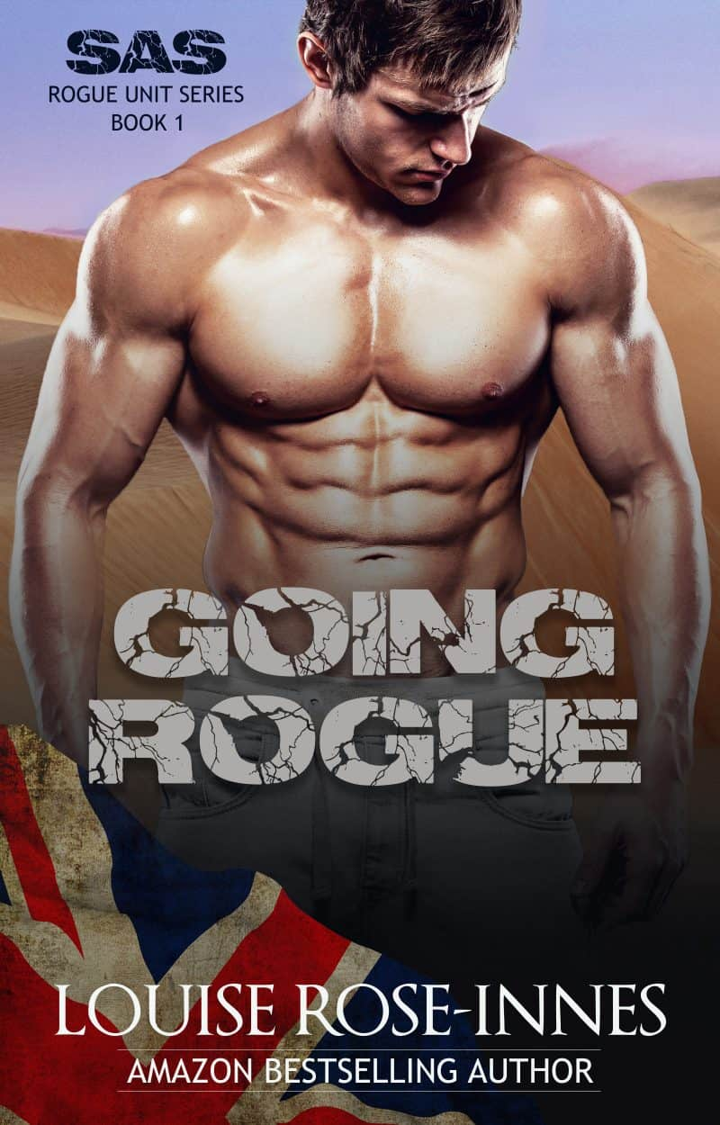 Cover for Going Rogue: Military Romance