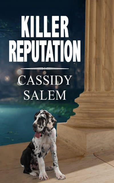 Cover for Killer Reputation