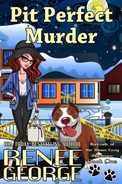 Cover for Pit Perfect Murder