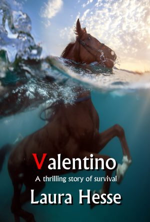 Cover for Valentino