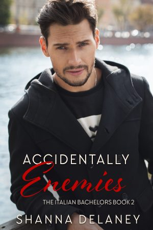 Cover for Accidentally Enemies