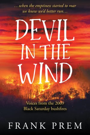 Cover for Devil In The Wind
