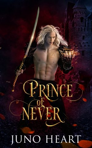Cover for Prince of Never
