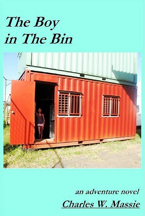 Cover for The Boy in the Bin