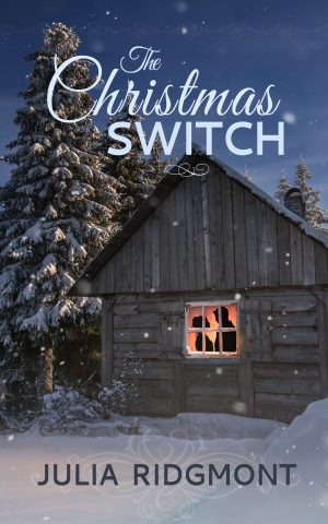 Cover for The Christmas Switch