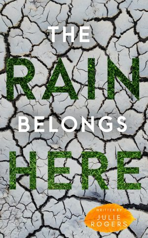 Cover for The Rain Belongs Here