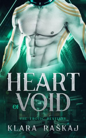 Cover for Heart of Void