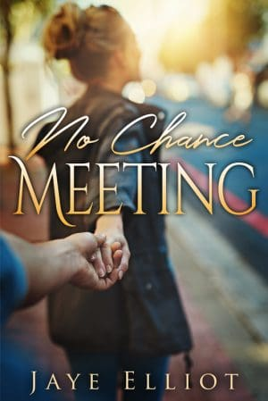 Cover for No Chance Meeting