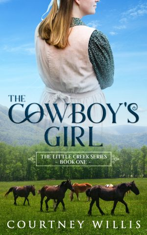 Cover for The Cowboy's Girl