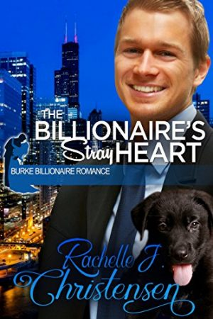 Cover for The Billionaire's Stray Heart