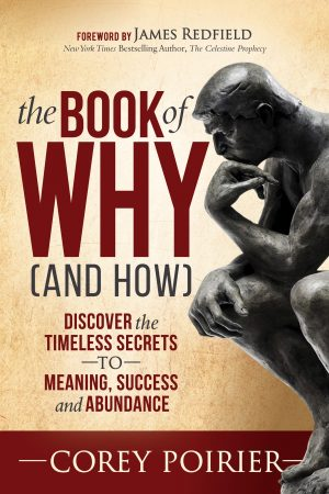 Cover for The Book of WHY (and HOW)