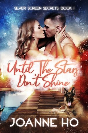Cover for Until The Stars Don't Shine
