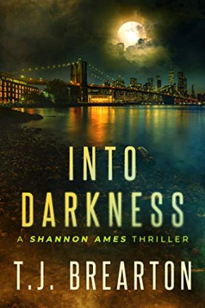 Cover for Into Darkness